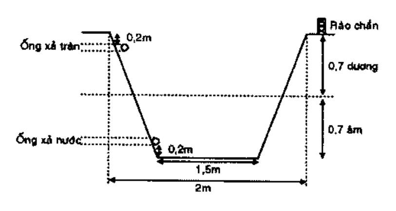sơ đồ mô hình nuôi ba ba trong ao